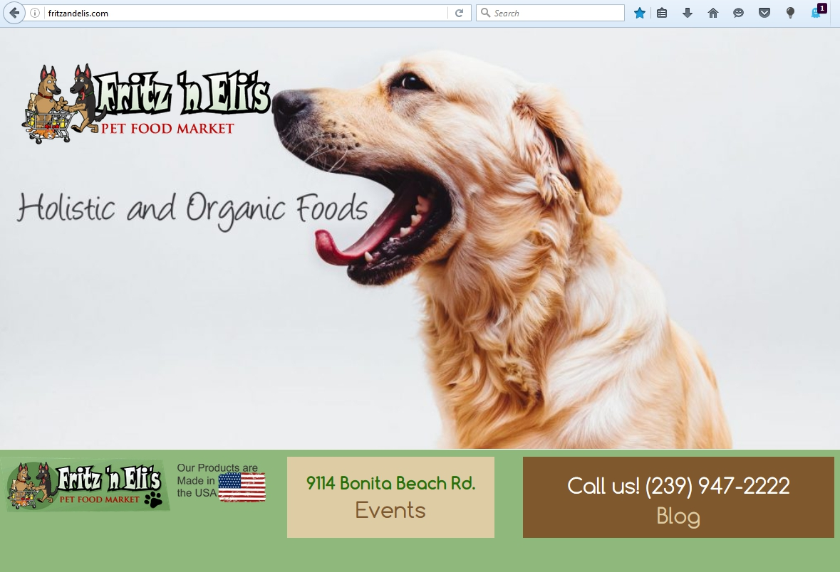 Bonita Springs Website Design Company Profile - Fritz N Elis